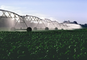 Figure-5_PivotIrrigationOnCotton