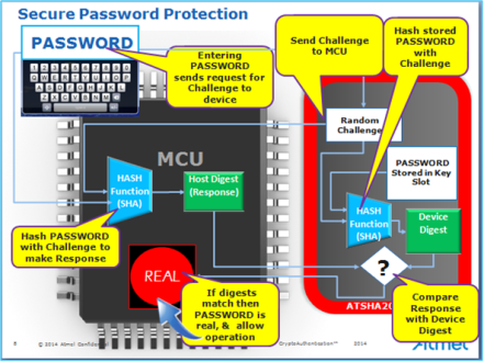 Secure password protection r0