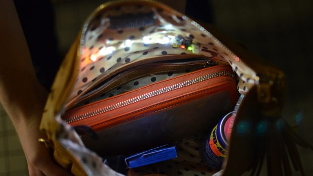 gemma_interior-purse-light-20-crop2