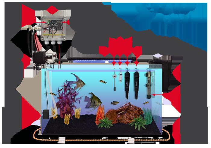 open_aquarium_representative_names_small