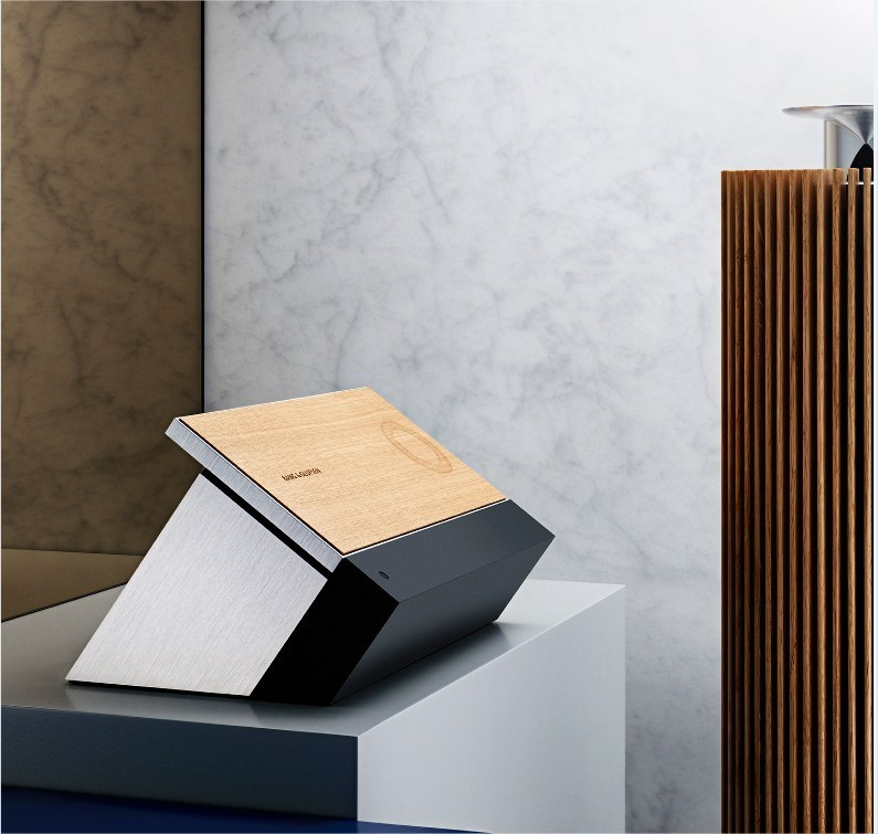 Bang and Olufsen BeoSound Moment